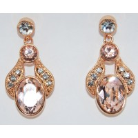 Champagne Crystal Exquisite Earrings
